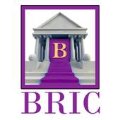 BRIC LLC  COMMERCIAL/RESIDENTIAL FINANCING, Commercial and Residential Stated Loan Program (BRIC,LLC.)