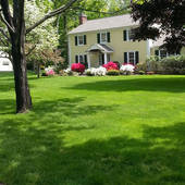 Joe Arruzza, Lawn Fertilization and Care for Lower Fairfield CT (Lawn Solutions)