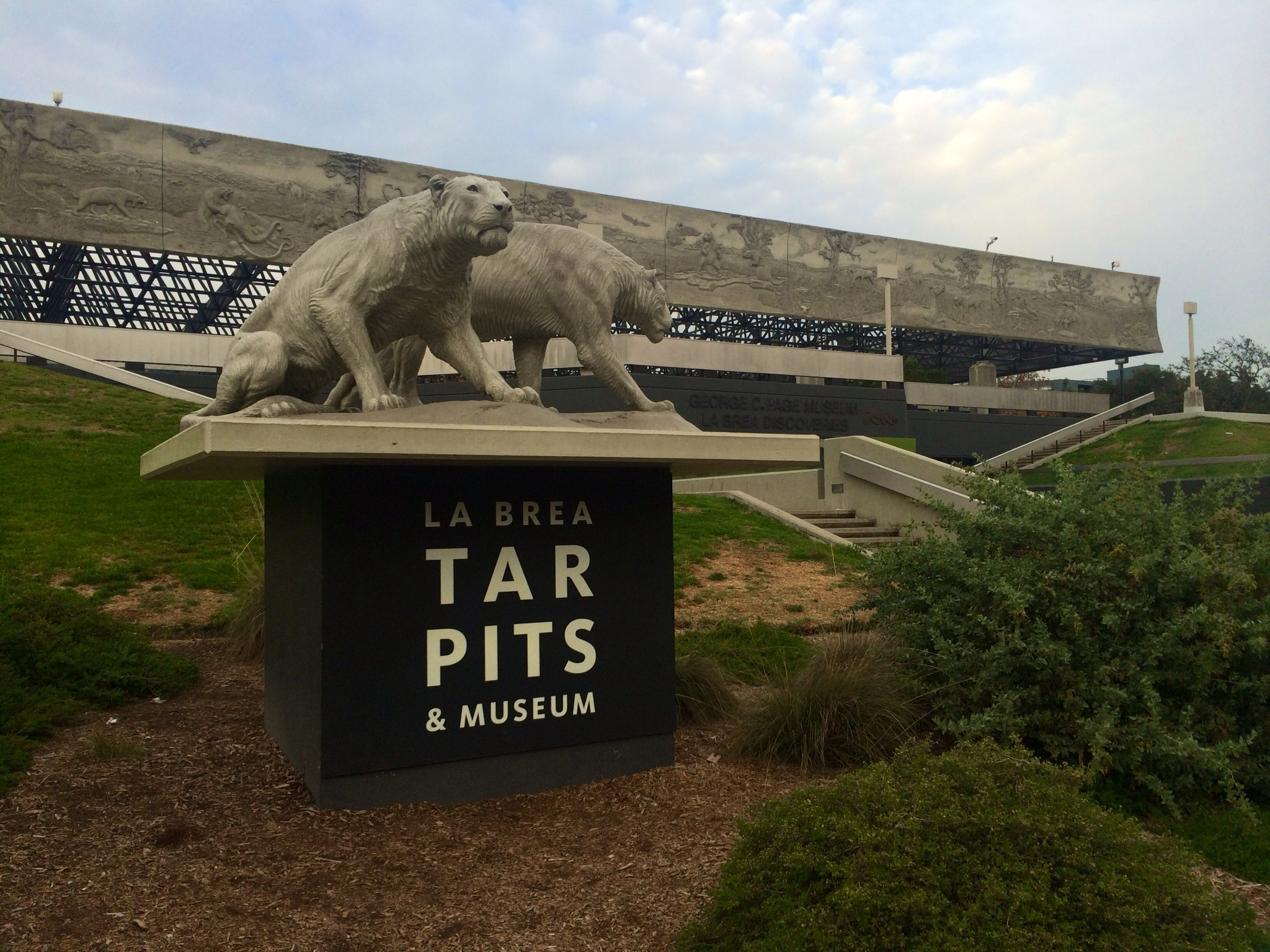 a history and the geology of la brea tar pits in california Asphalt at the la brea tar pits in los angeles -- a geologic seep that california turkey the la brea tar pits museum history museum of la.
