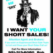 Bob Irish (Short Sale Gallery)