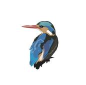 Real Bird (RealBird Inc.)