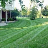 Max Kruschka (Professional Lawn Services)