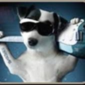 Zack  King, The Pet Friendly, Eco-Friendly Realtor (Keller Williams)