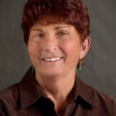 Pat Somers, Kingman/Lake Havasu Land & Homes (Red Sign Realty)
