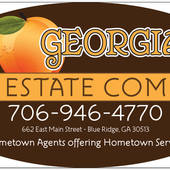 Vincent  Davis, Owner/Broker GA Real Estate Company (Georgia Real Estate Company)