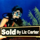Liz Carter, Broker/Owner of Liz Carter & Team Realty, Katy TX (Houston) (Liz Carter & Team Realty-Your Real Estate Resource For Life!)
