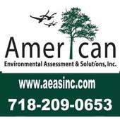 American Environmental Assessment & Solutions (American Environmental Assessment & Solutions, Inc)