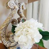 White Birch Interiors, Home Staging and Interior Designs (White Birch Interiors)