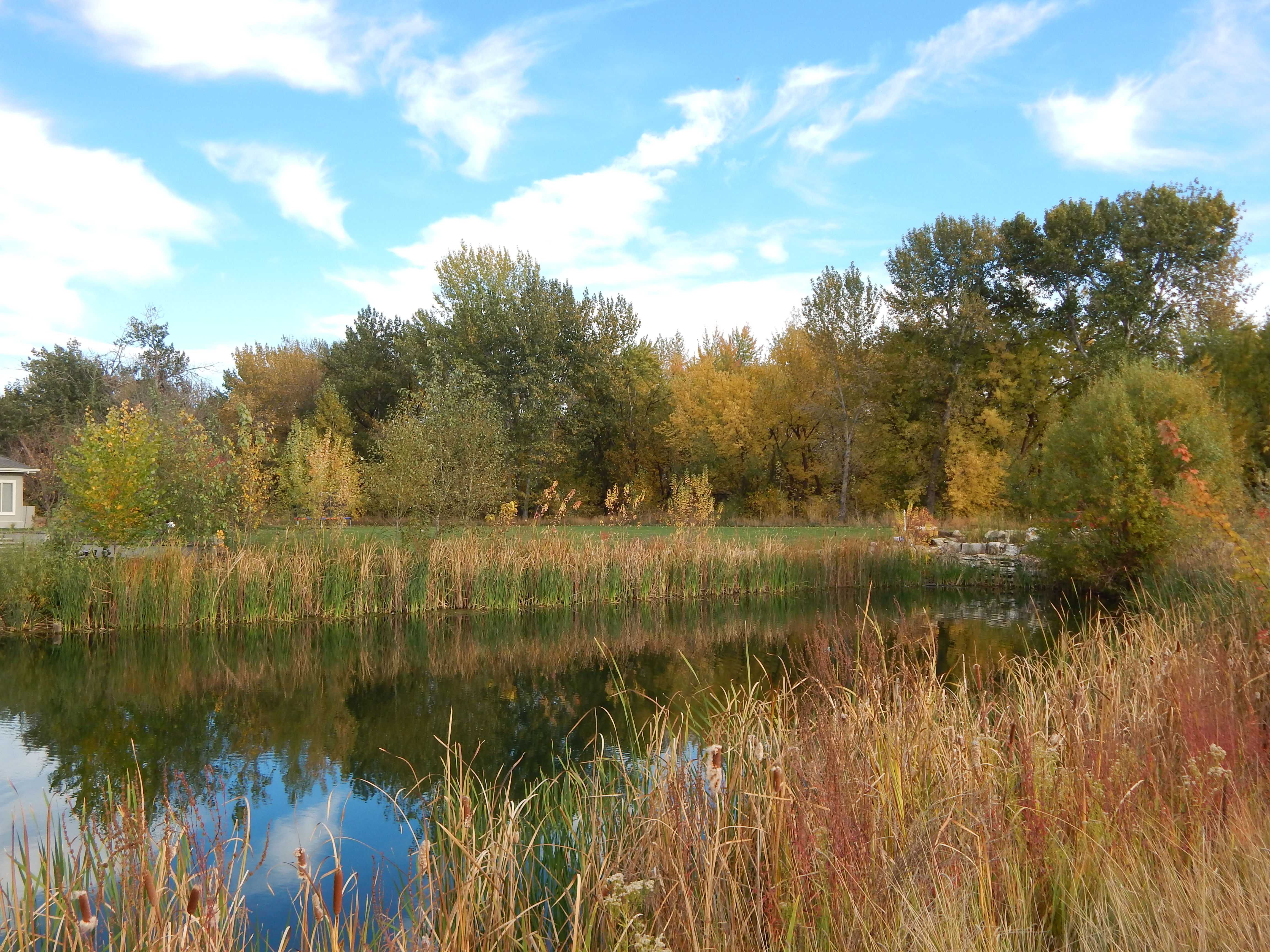 Private waterfront retreat in eagle id to build on for Building a 1 acre pond