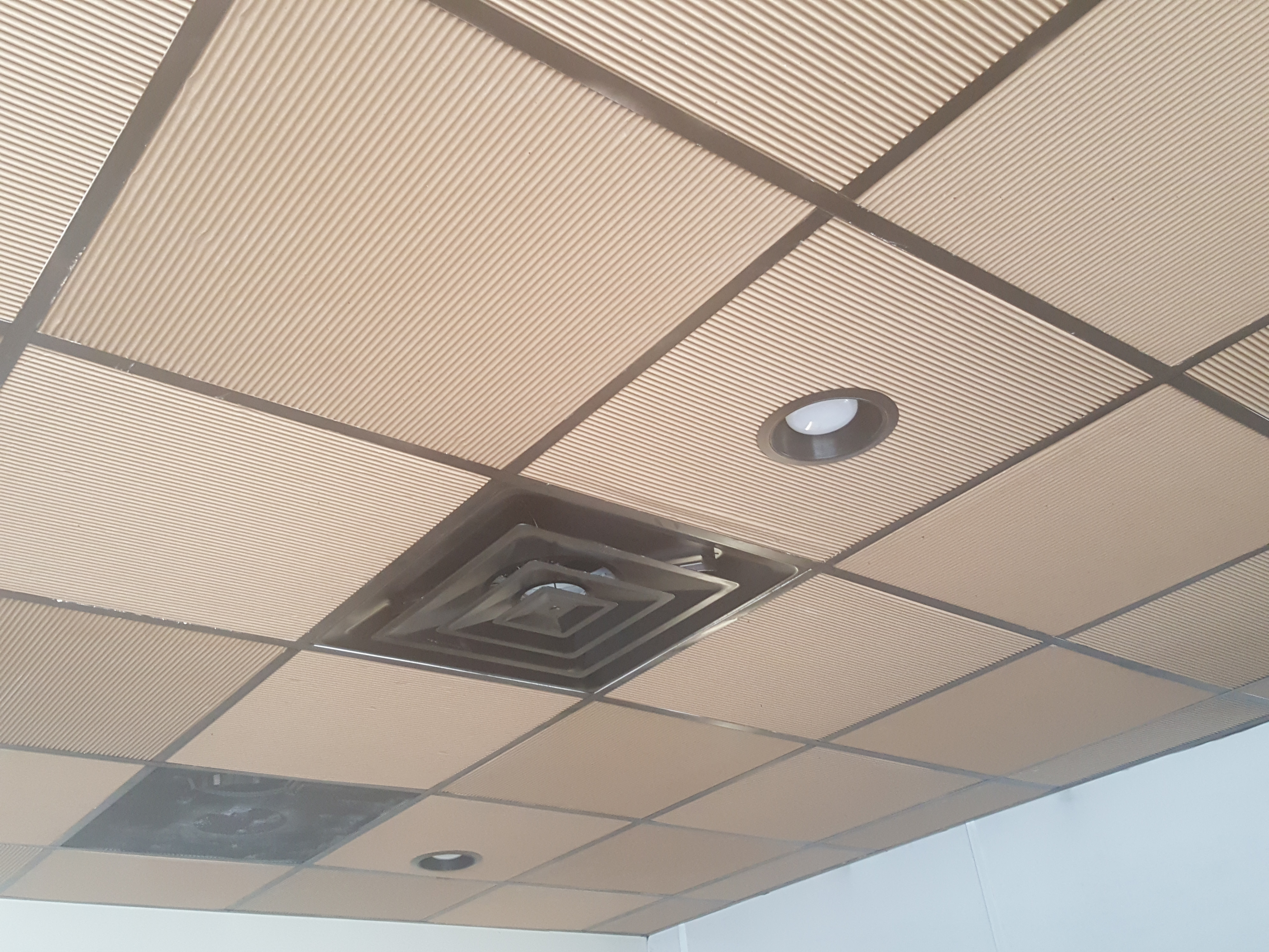 Brown Cardboard for the Office and Ceiling and Walls ??