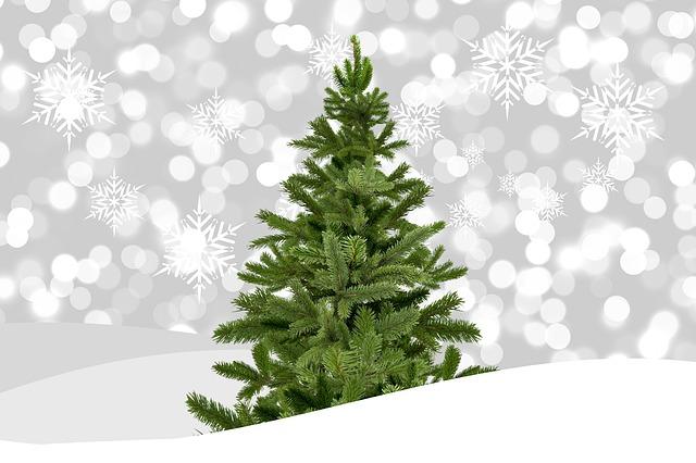 u cut christmas tree farms in east king county