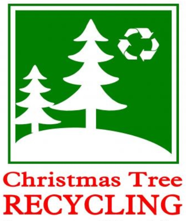 Disposing Of Christmas Trees: Disposing Of Christmas Trees/Holiday Trash In Charlotte