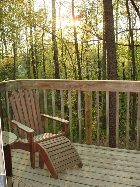 Kildaire Farms Subdivision Cary NC Tree House