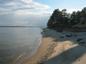 Seahorse Beach in Lusby
