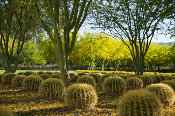 sunnylands estate