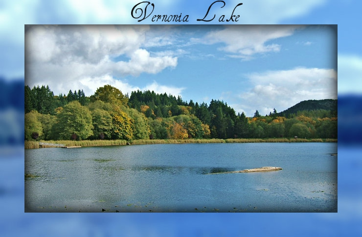 Vernonia Lake Vernonia Oregon 97064