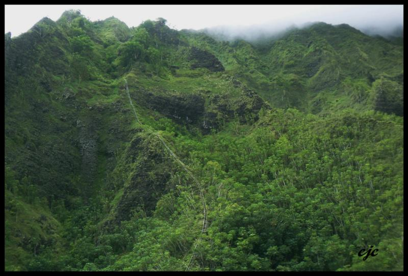 "Haiku Stairs ""Stairway to Heaven"" Wordless Wednesday"