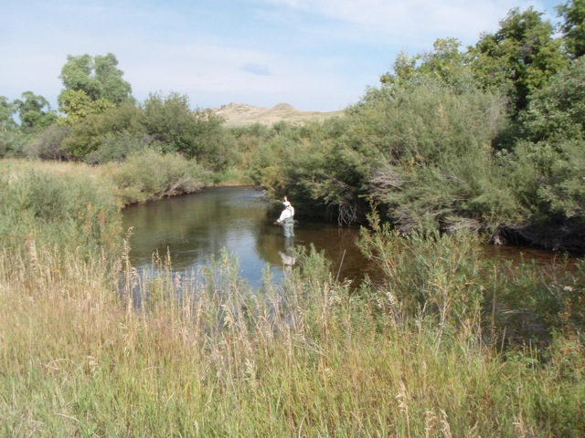 Wyoming fishing
