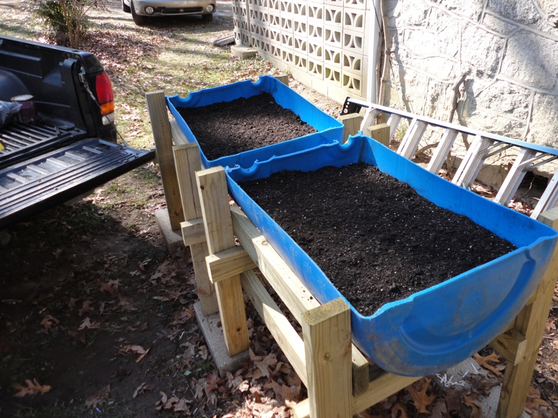 An Experiment in Above Ground Gardening