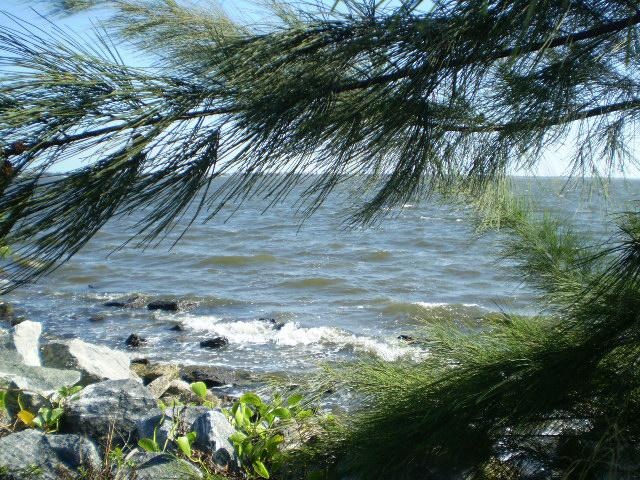 Indian River Lagoon, Melbourne Florida