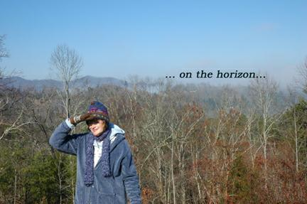 "janeAnne takes a look at the ASHEVILLE real estate ""horizon"""