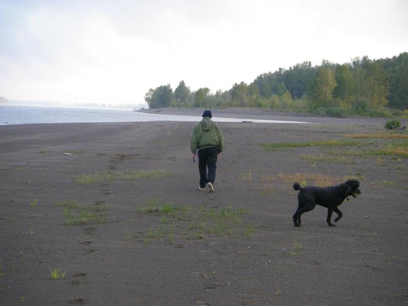 Lots of room to throw a ball.  When you see someone else there (not common) they are eother fishing or breaking the same law you are i.e. letting their dogs enjoy some off leash time