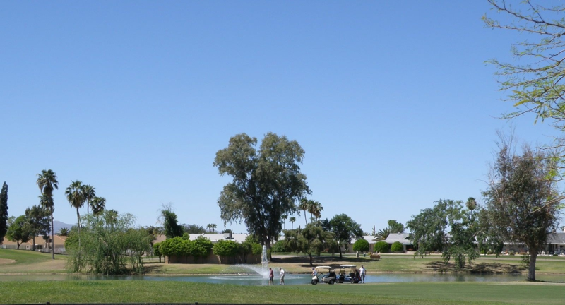 One of the Many Golf Courses in Sun City Arizona