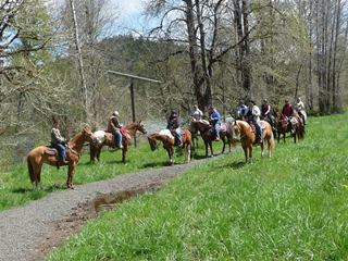 Horse Property For Sale In Willamette Valley