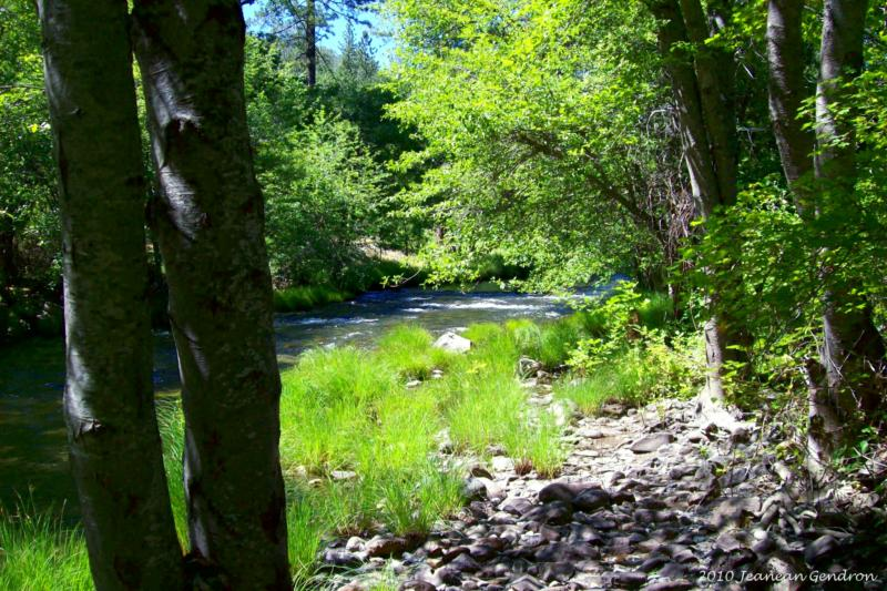 ar127798547022131 Northern California Properties ~ Ranch and Land ~ Creek Frontage on Clear Creek!