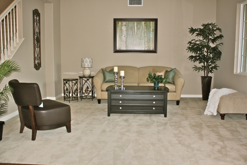 Home Staging Menifee Living Room