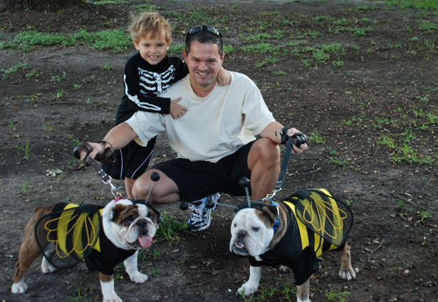 Bumble Bee Bulldogs