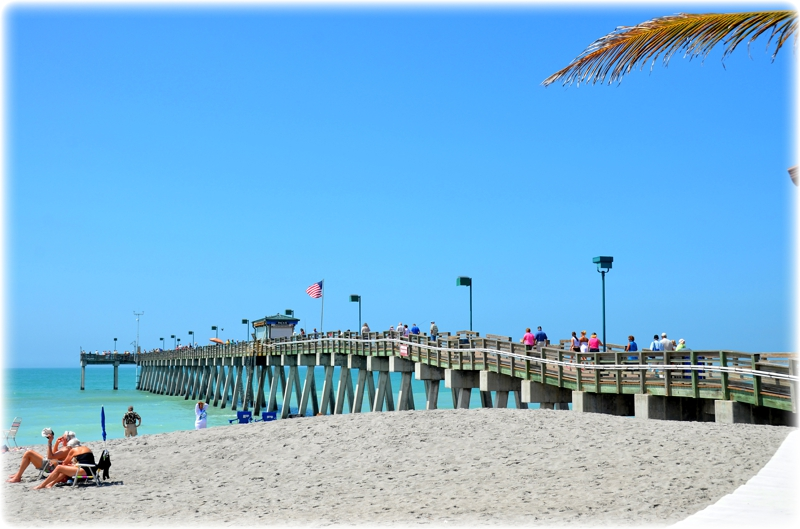 venice fishing pier and beach plus sarasota florida