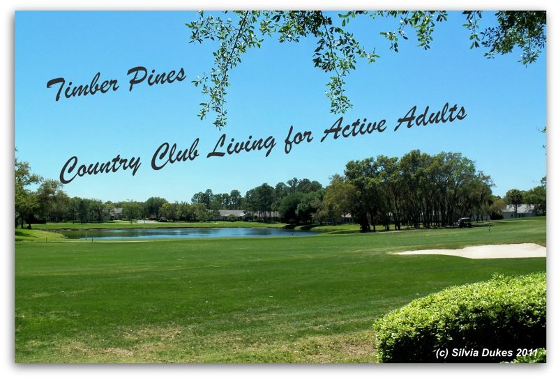 Timber Pines Homes for Sale by Silvia Dukes