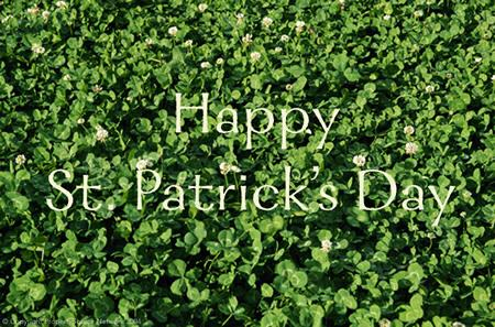 Happy St. Patrick's Day from F.C. Tucker 1st Team Real Estate