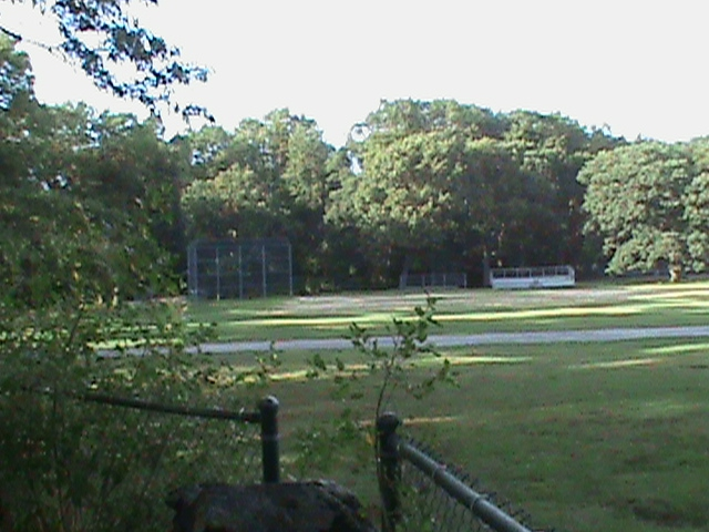 The Cove Auburndale Park baseball field Newton MA