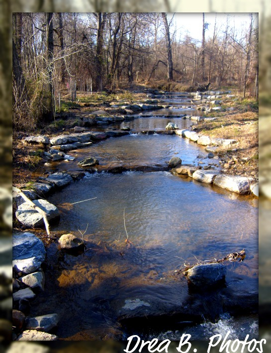 Maydale Park: stream