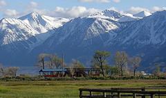 Eastern Sierra Nevada Mountain Range from Johnson Lane