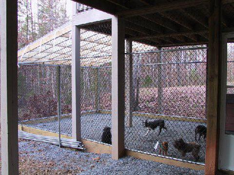 Outside dog pen