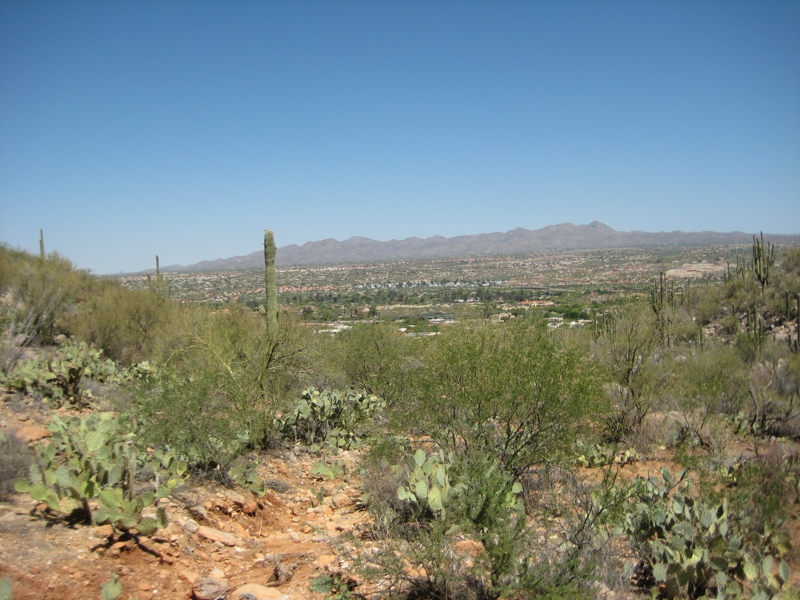 view from Linda Vista hiking trail