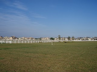 Equus Community