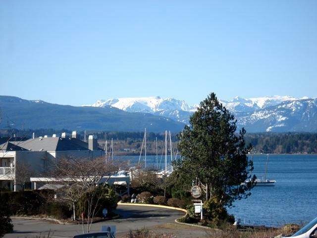 Looking over Comox harbor towards the Glacier