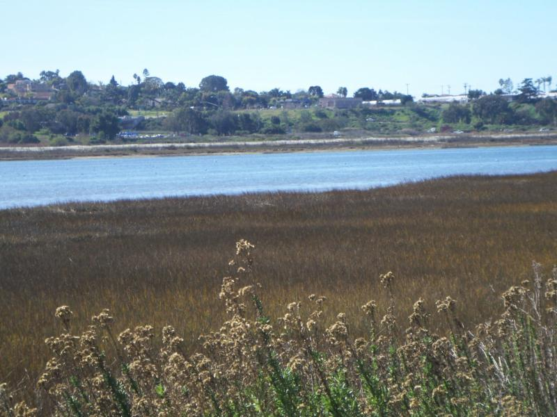 The Batiquitos Lagoon in South Carlsbad - Jeff Dowler