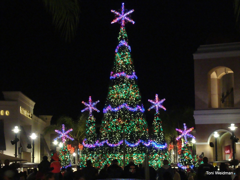 Musical Christmas Tree at the Shops at Wiregrass in Wesley Chapel ...