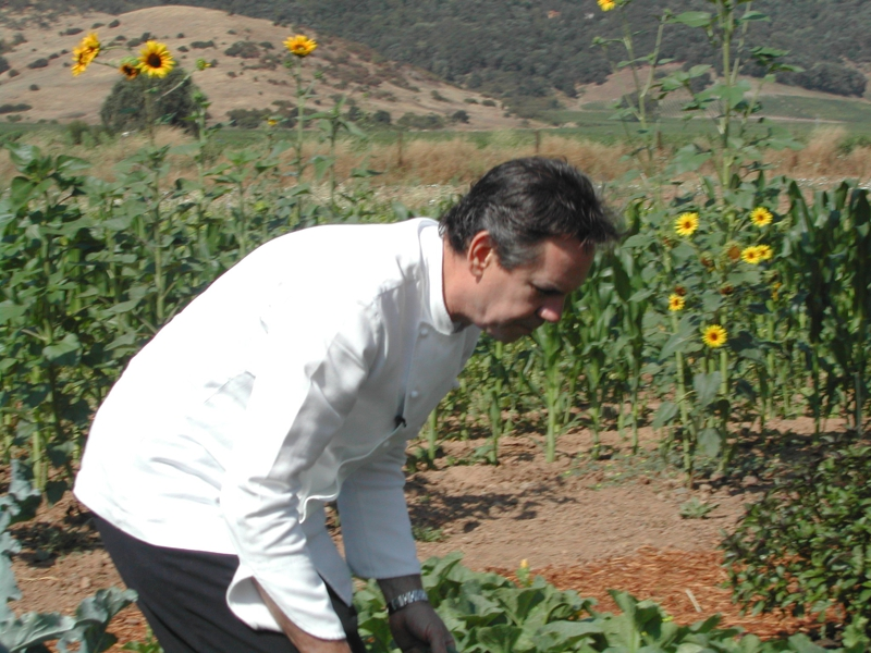 Thomas Keller, Yountville Garden, Napa Valley
