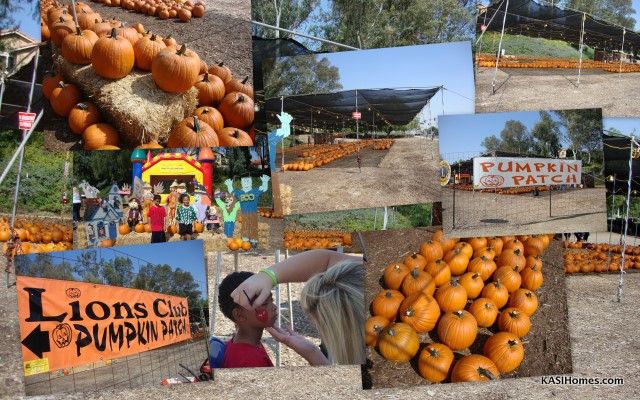 Chino Hills Pumpkin Patch