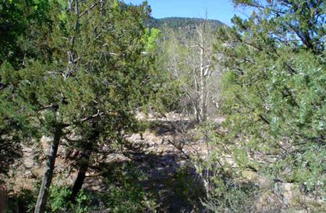 Beaver Valley Near Payson Az