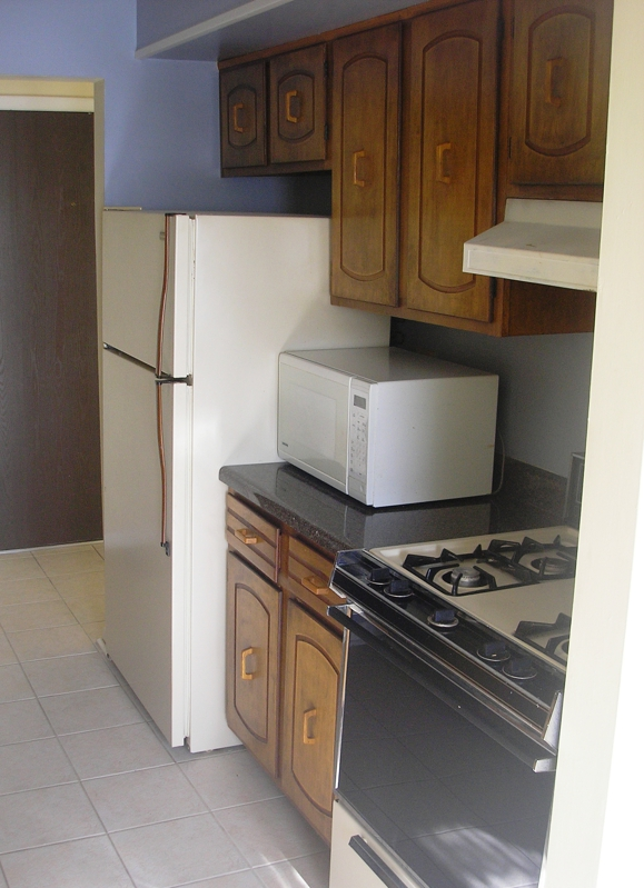 Kitchen of Condo For Sale In Woodridge
