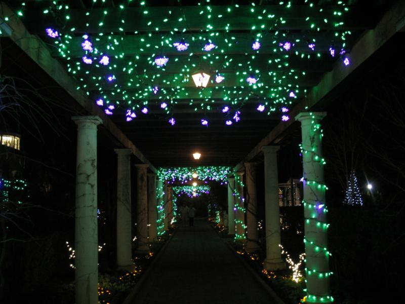 Botanical Gardens Nc Lights Garden Ftempo