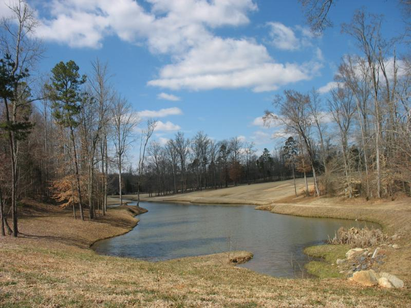 Firethorne in marvin nc homes for sale and neighborhood for Firethorne builders