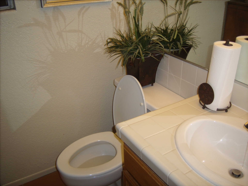 Open Toilet in a home - MLS quality? Hopefully not